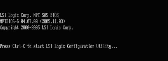 LSI Logic Configuration Utility